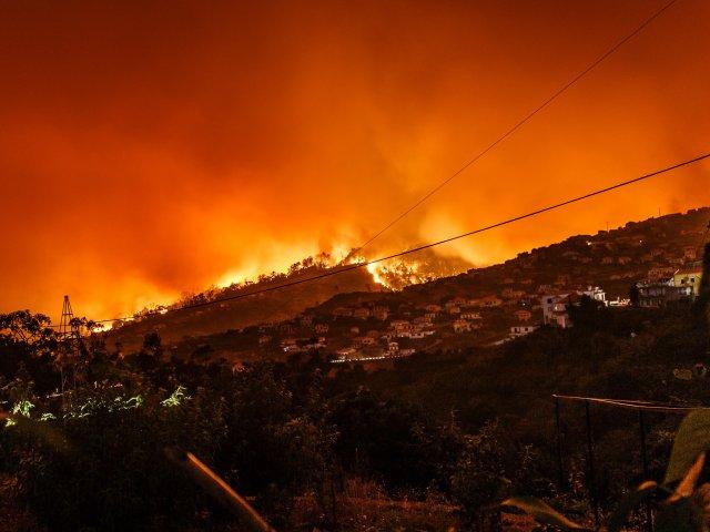 Bushfire Crisis WOSM Secretary General Letter of Support