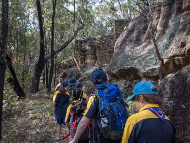Cub Scouts in Uniform on Bushwalk
